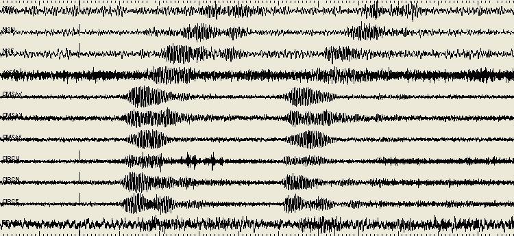 """A helyi vulkanológiai obszervatórium által közzétett ábra a """"zajrengésről"""" (Forrás: www.ov.ingv.it)"""