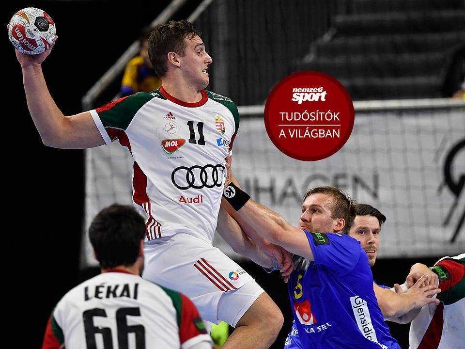 46449382e6 Nagy meccset játszott a magyar válogatott a svédekkel, de a skandinávok  kerekedtek felül (Fotó: MTI/Illyés Tibor)